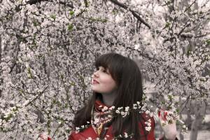 spring-1003599_1280