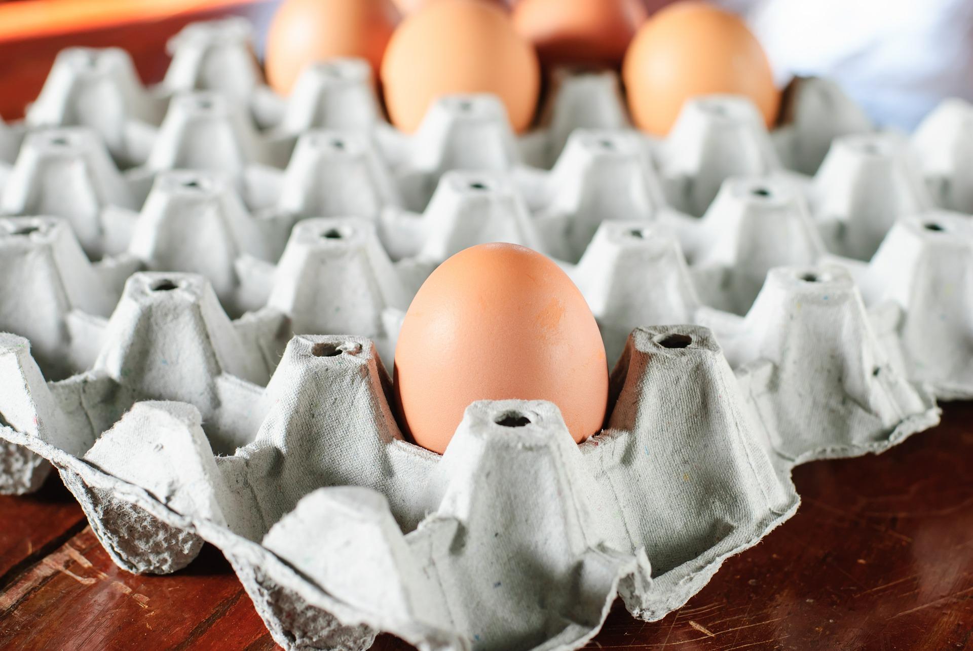 egg-636947_1920