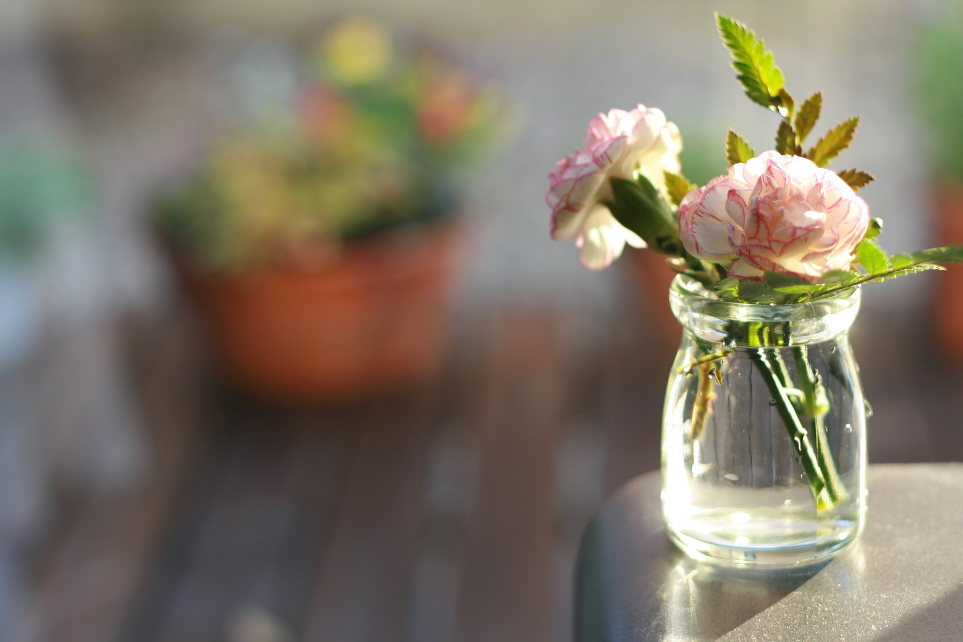 flowers-802998_1920
