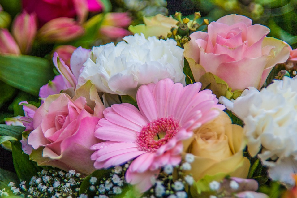 flowers-986006_960_720