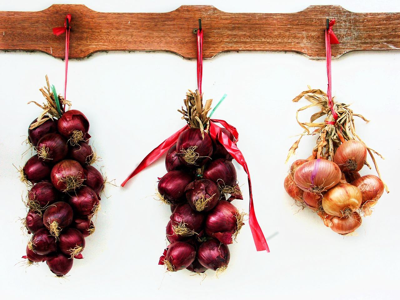 onions-748419_1280